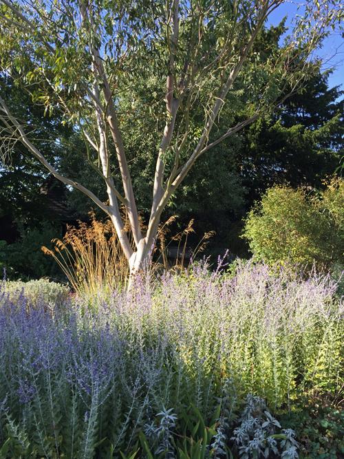 kew-gardens-4.jpg