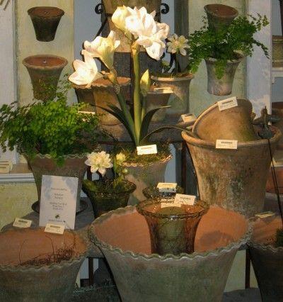59e01c75efe7b8fd438268a60b629be4--garden-urns-indoor-plants.jpg
