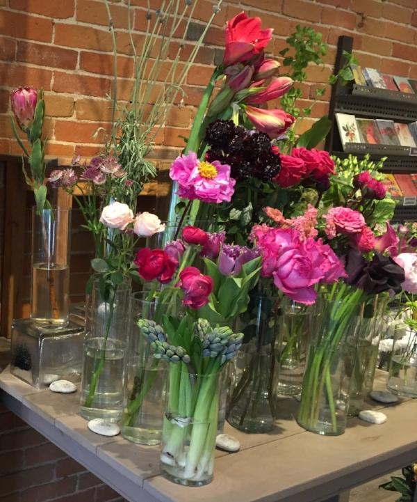 cymbidium florals, portsmouth, NH