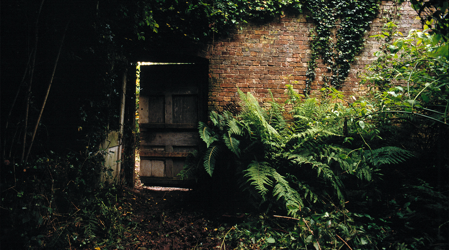 the-lost-gardens-of-heligan-cornwall-door.jpg