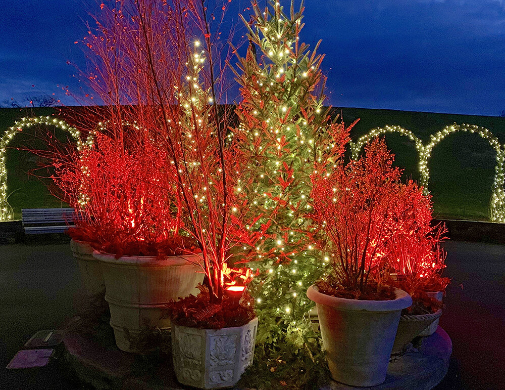 Christmas Longwood Gardens 3.JPG