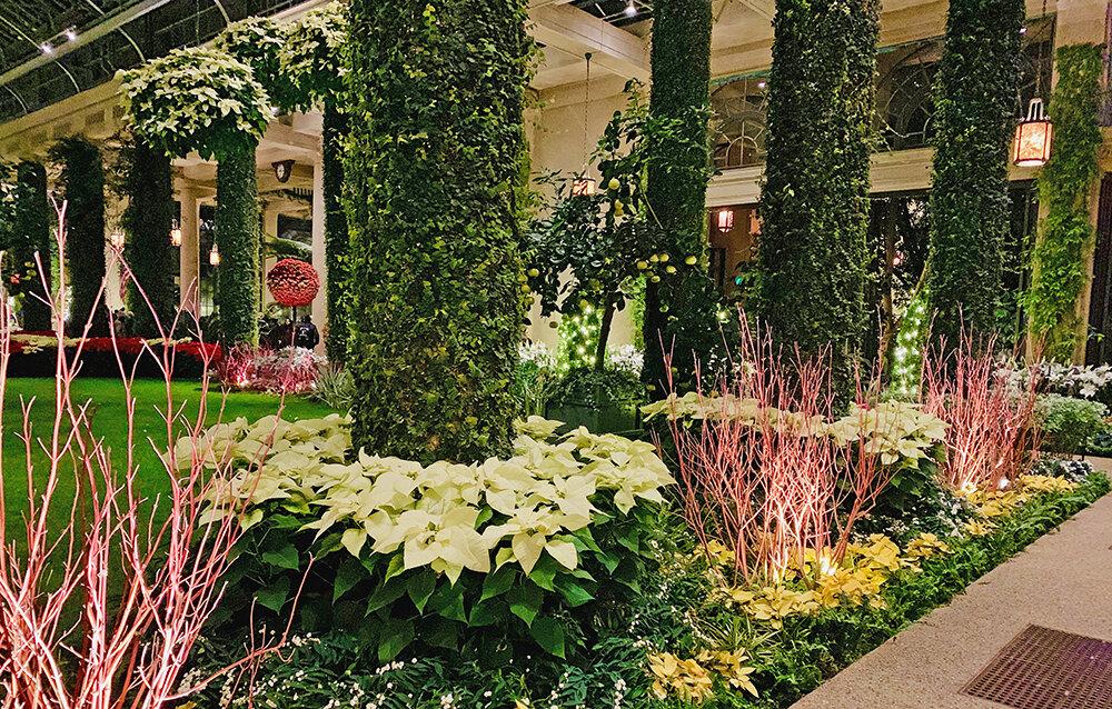 Christmas Longwood Gardens 10.JPG