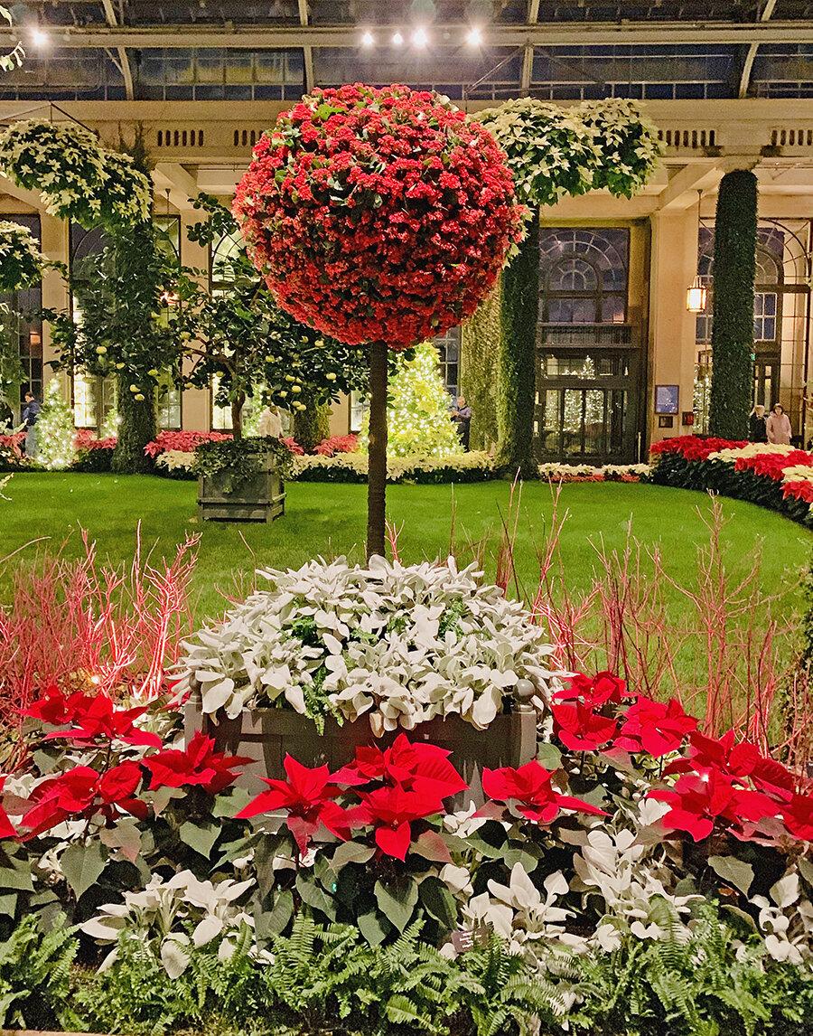 Christmas Longwood Gardens 11.JPG