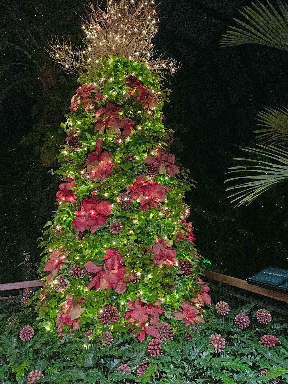 Christmas Longwood Gardens 18.JPG