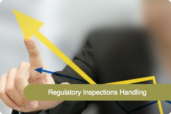 REgulatory inspections.001.png