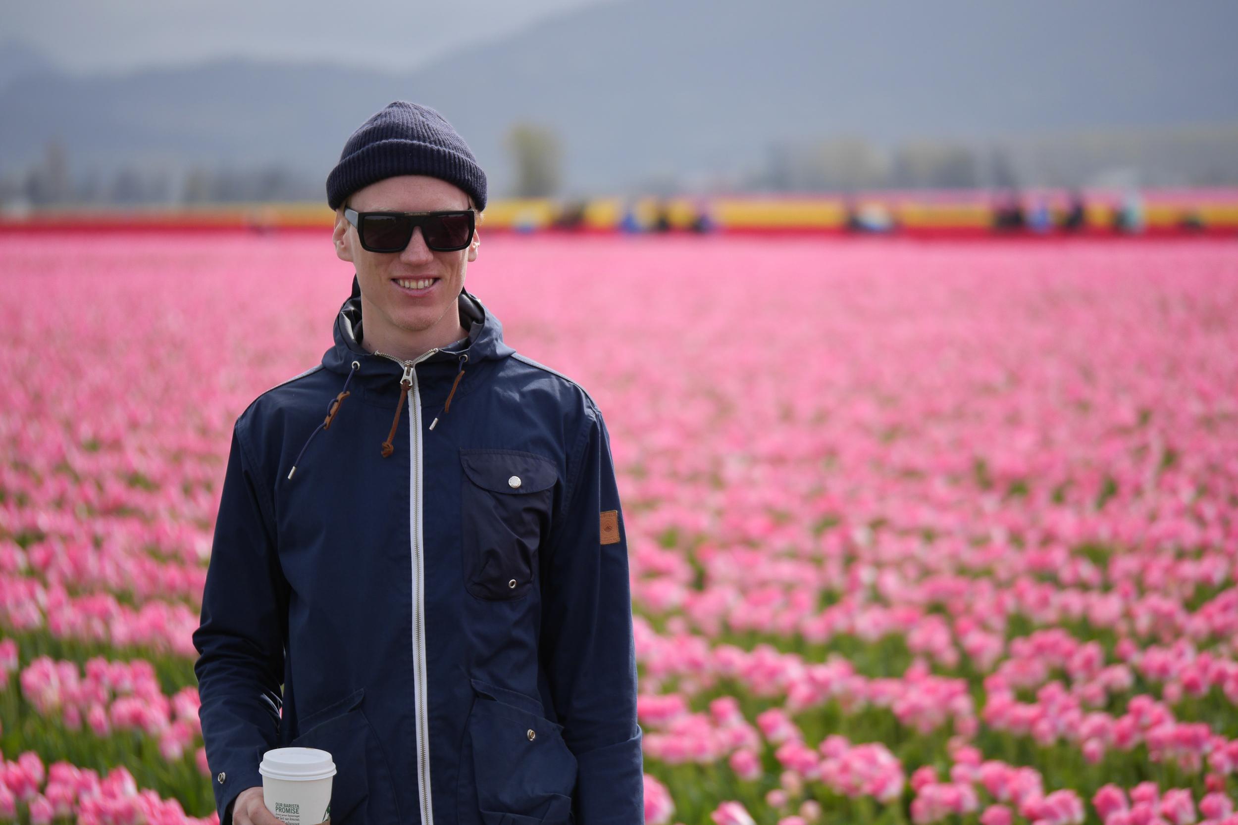 tulips washington-2.jpg