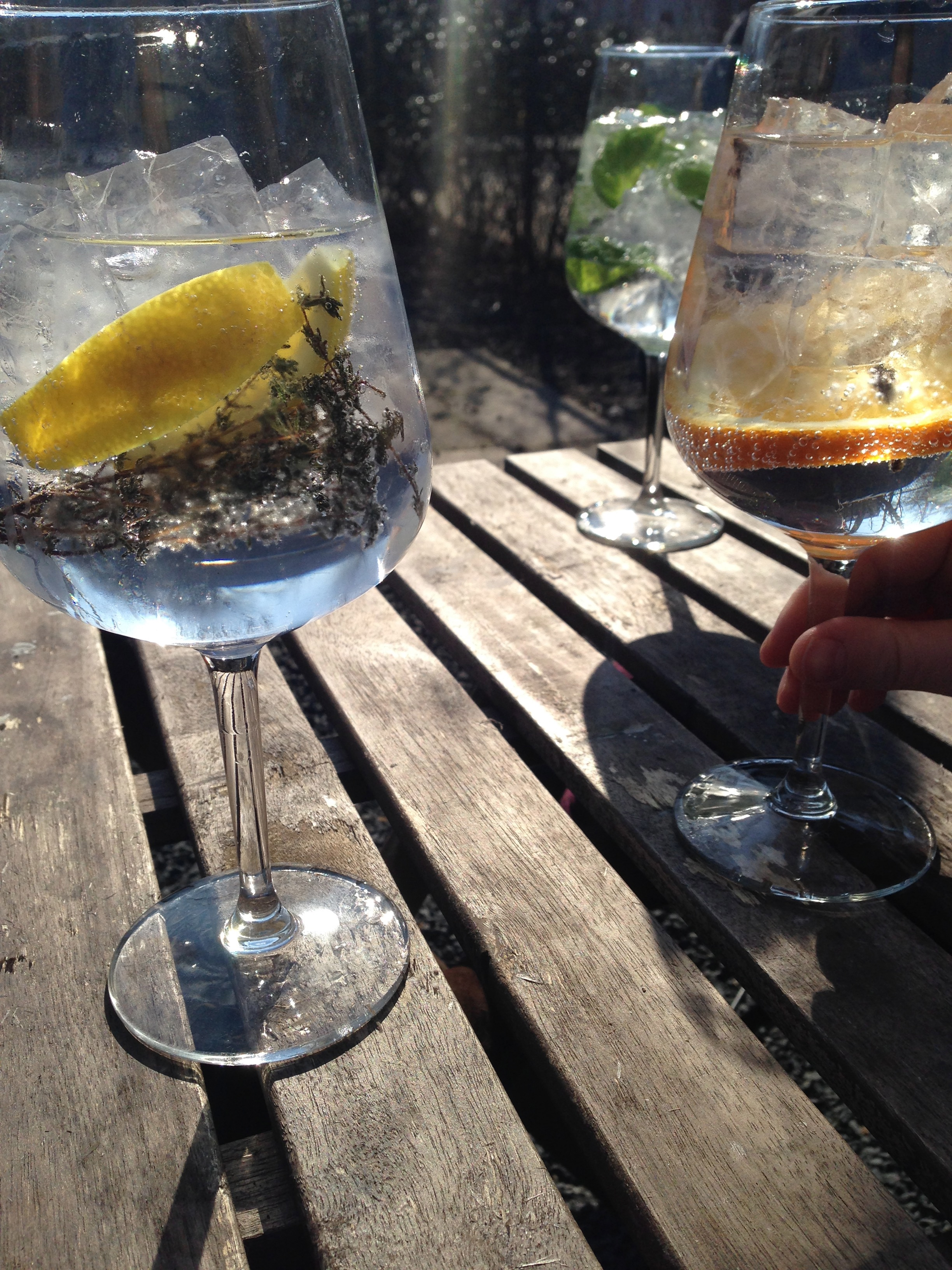 hello Getaway, City Guide, Amsterdam, Mossel and Gin