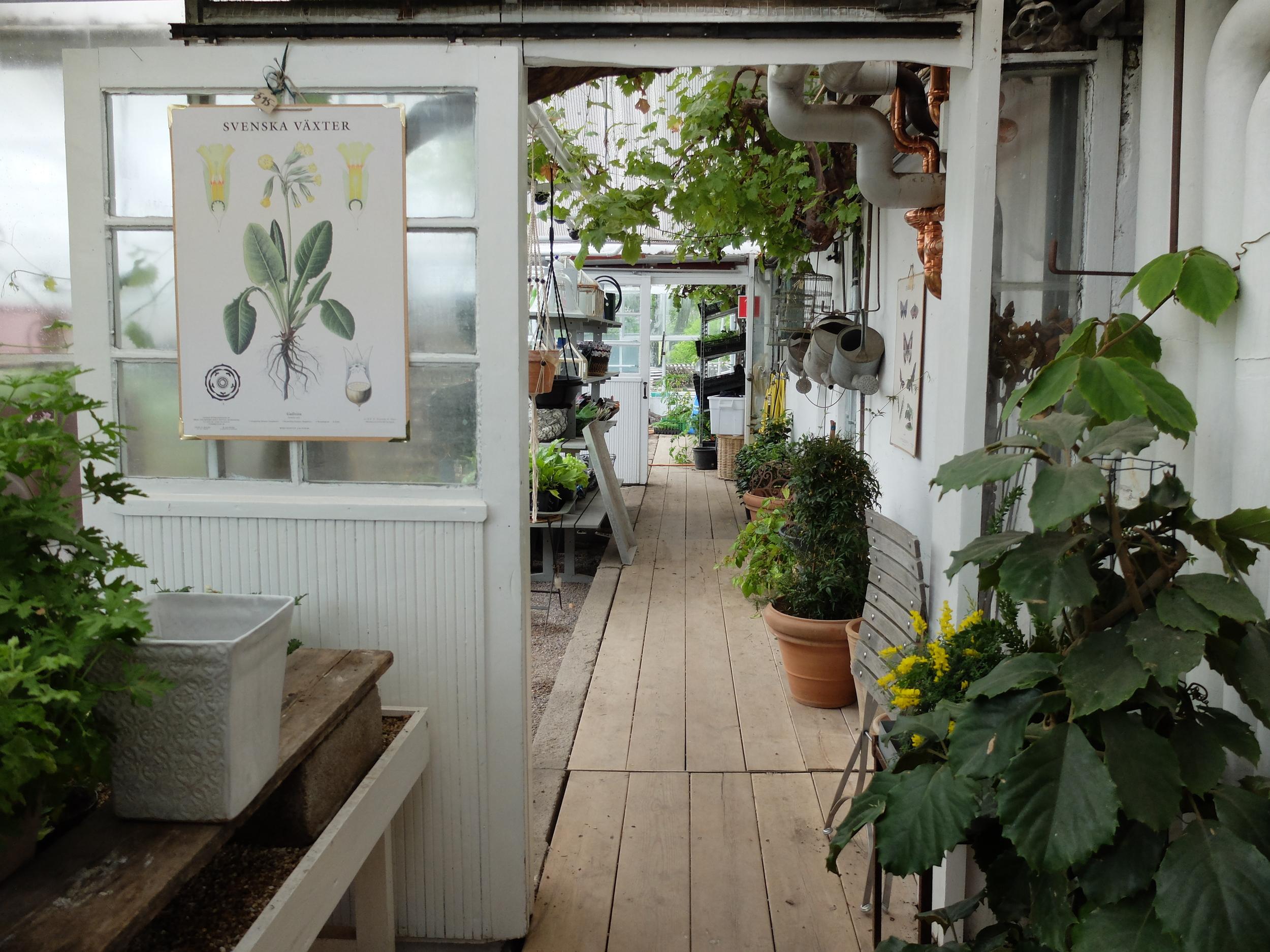 hello getaway, stockholm, sweden, city guide, rosendalsträdgård