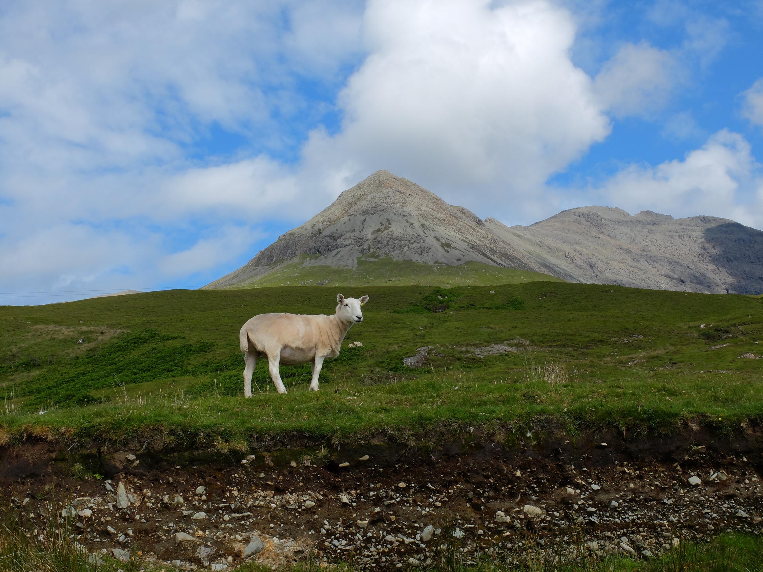 hello getaway, isle of skye, nature, scotland