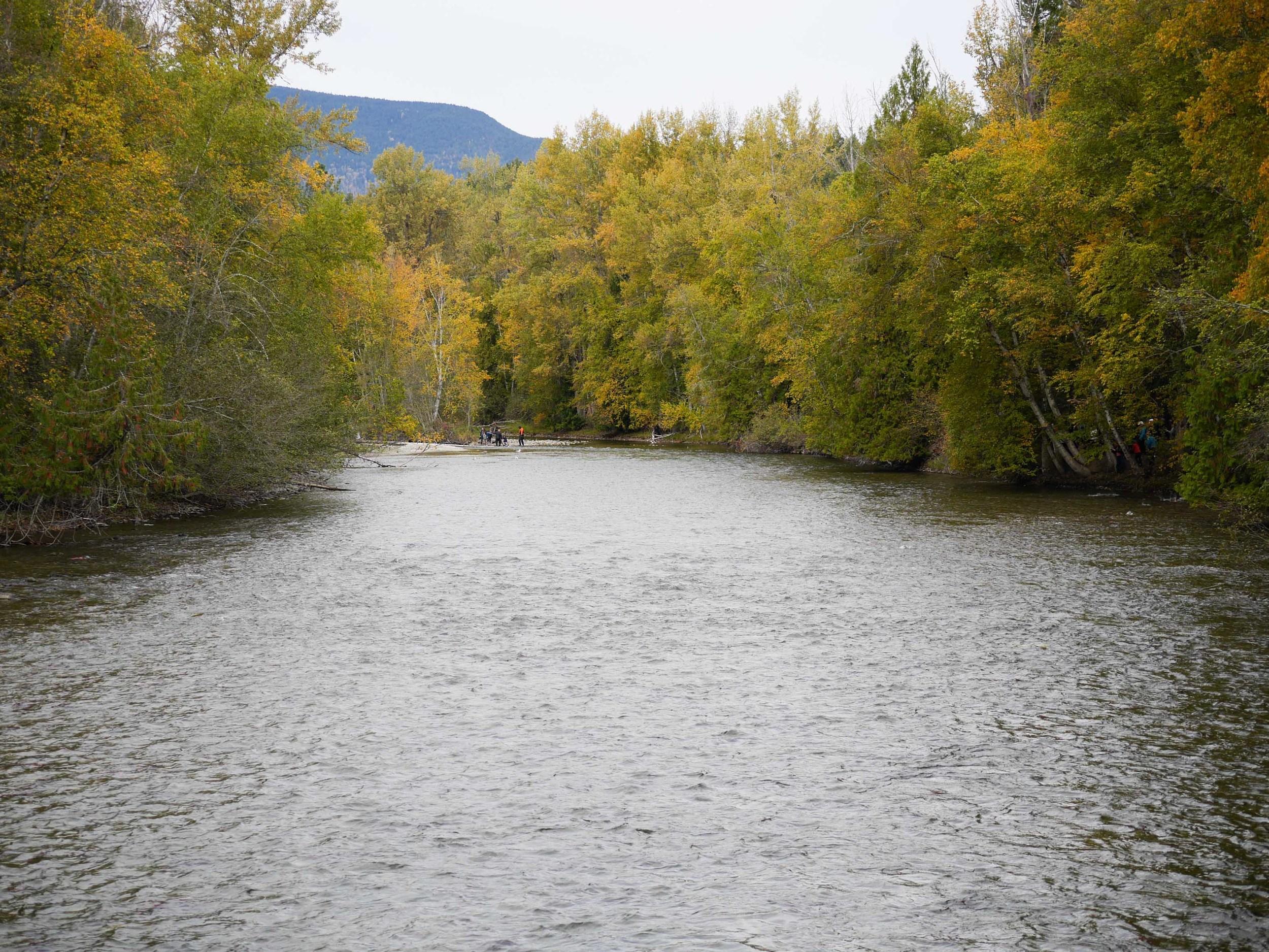 adams river okanagan valley guide weekend hello getaway