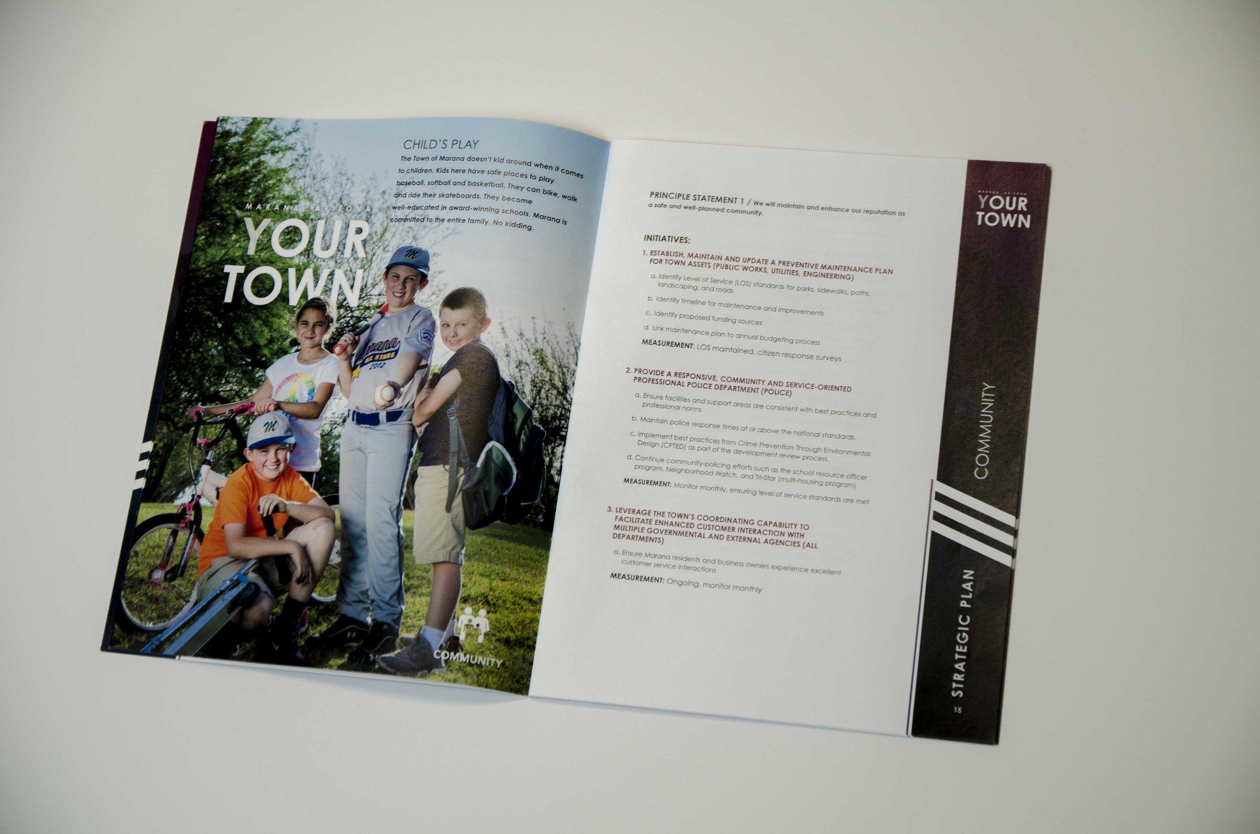 Strategic Plan Community Page.jpg