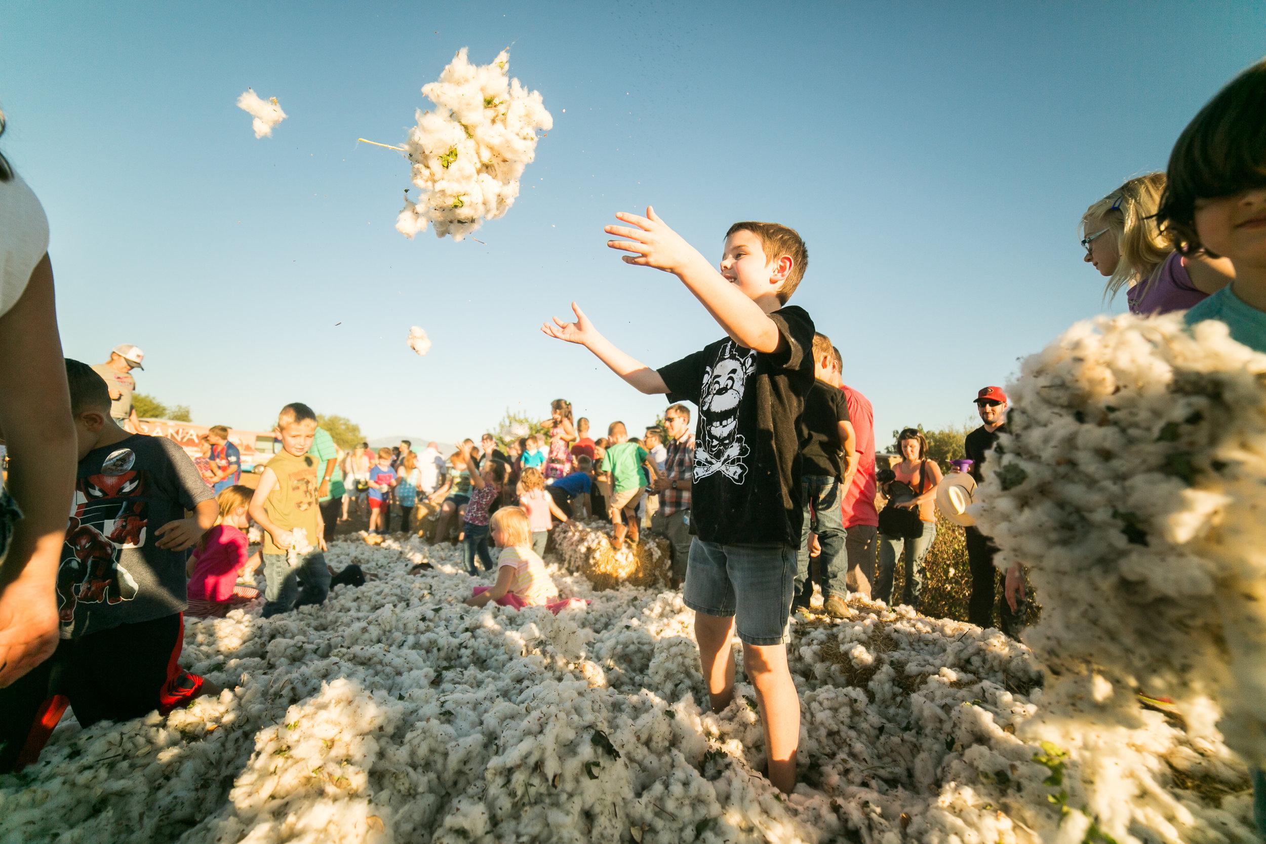 CottonFestival-32.jpg