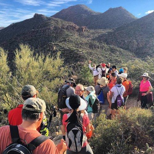 Trails+Hike+.jpg