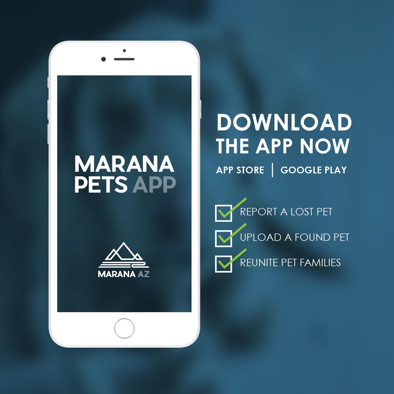 Marana Pets App Promo Card PREVIEW.jpg