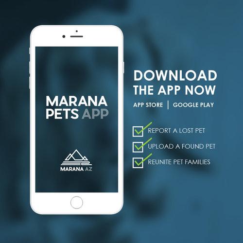 Marana+Pets+App+Promo+Card+PREVIEW.jpg