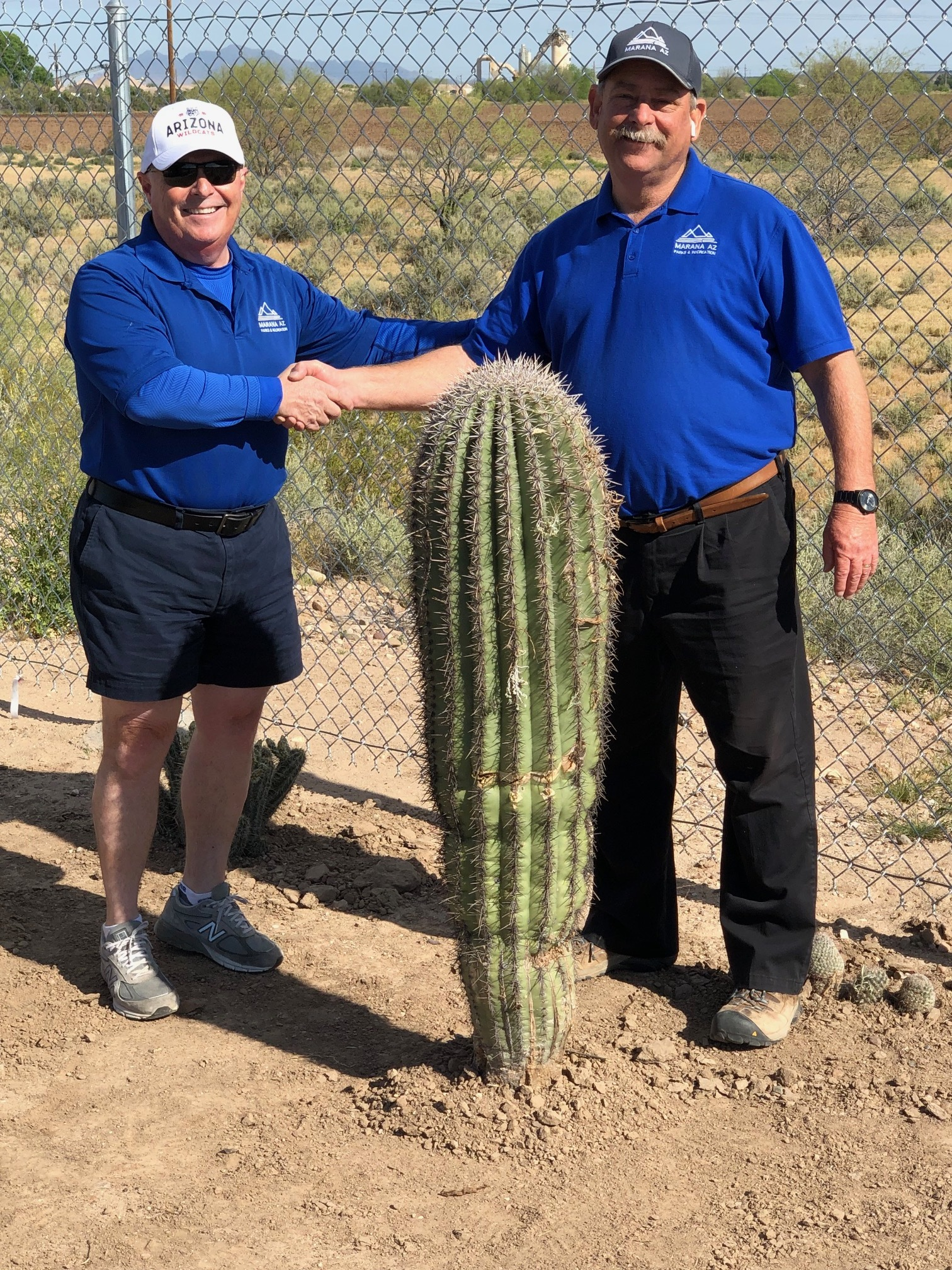 Jim Conroy and Dave Herman re-plant a Saguaro on Arbor Day.