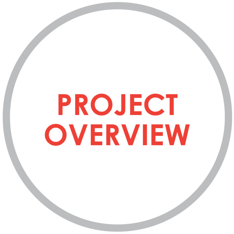project+overview.png