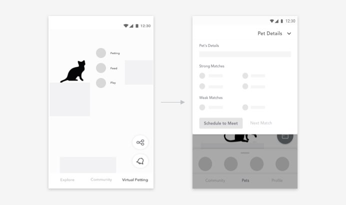 pet wireframe 2.jpg