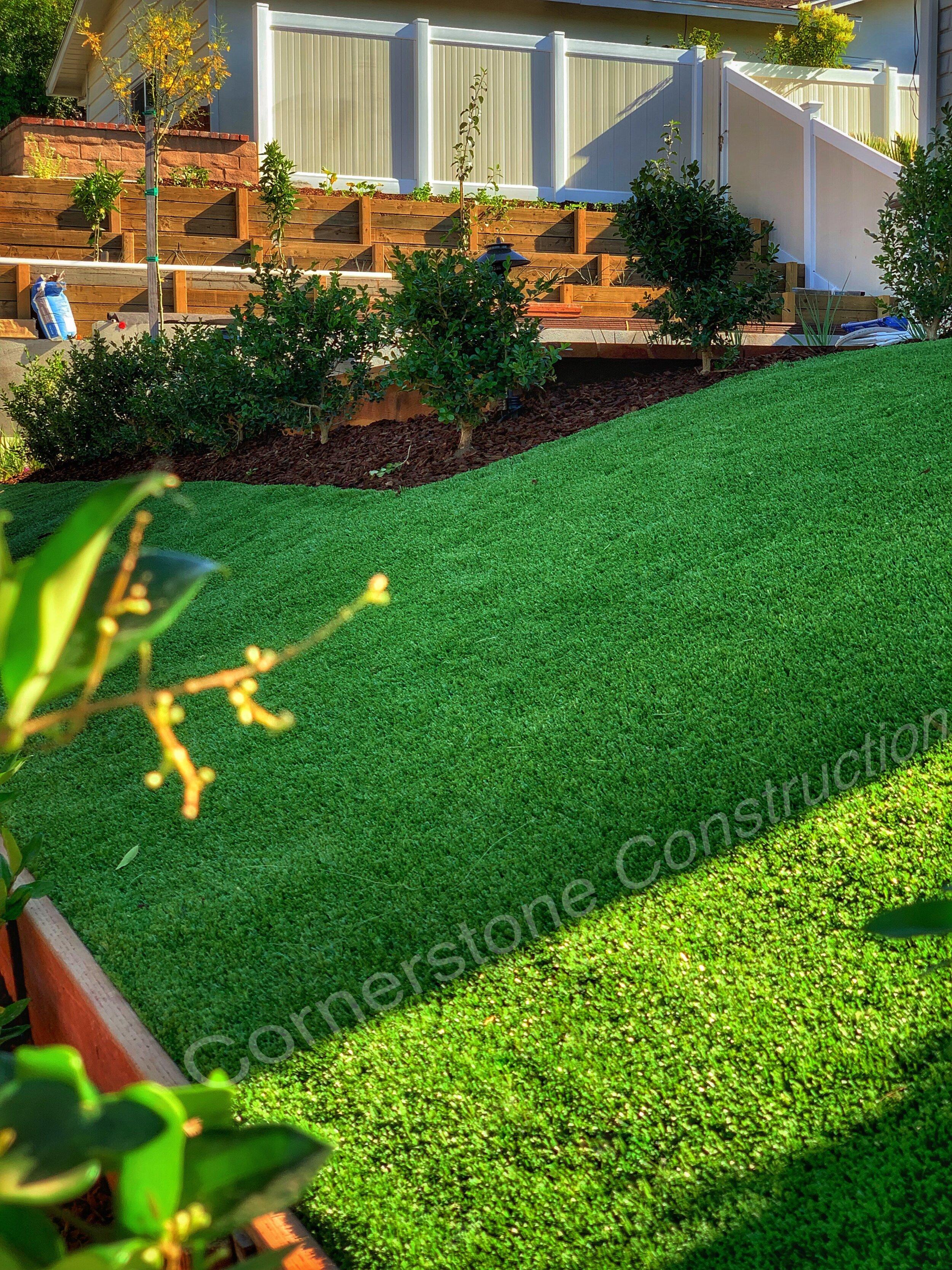 grass hill in backyard