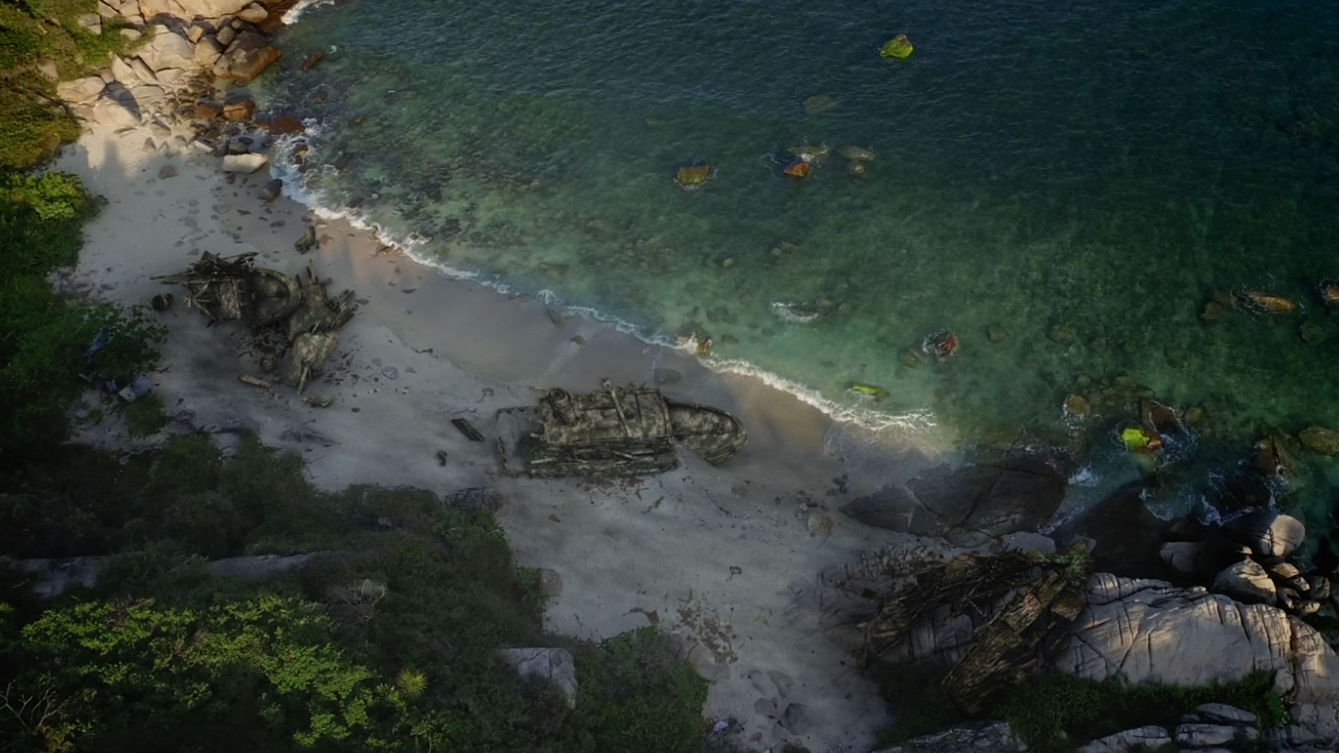 TLF_Beach.jpg