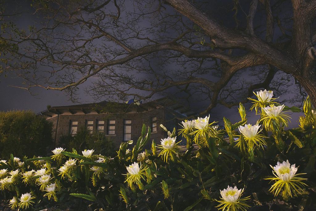 image from: http://stevendn.smugmug.com/