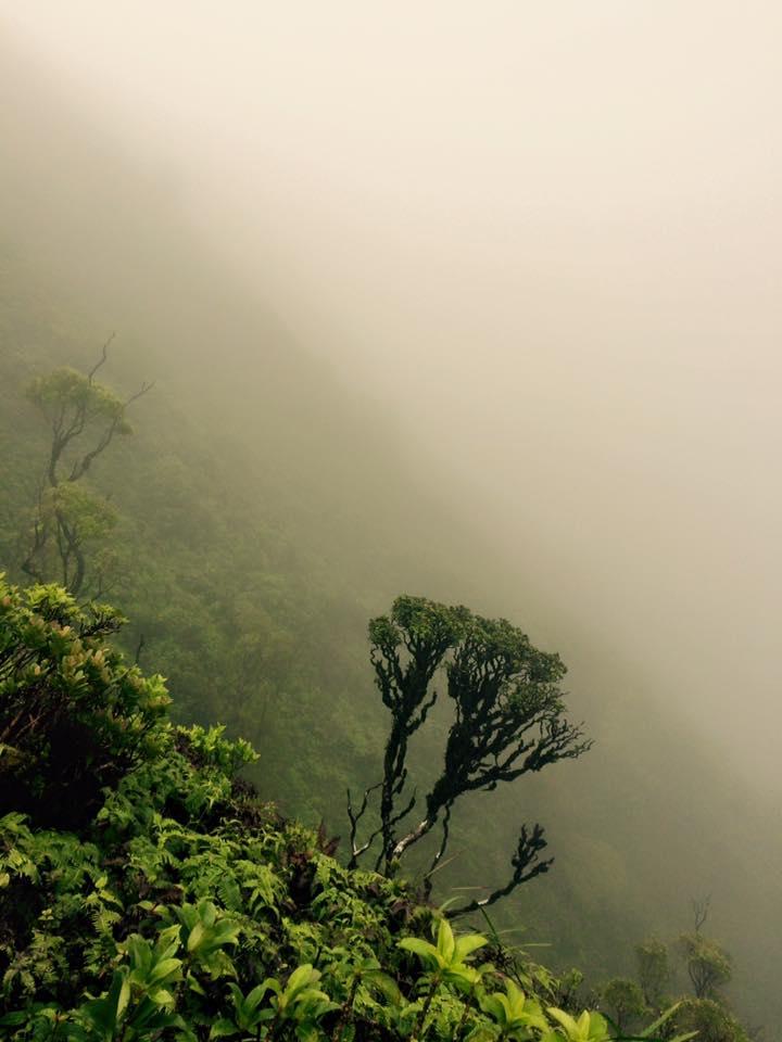 paiko mountains hawaii