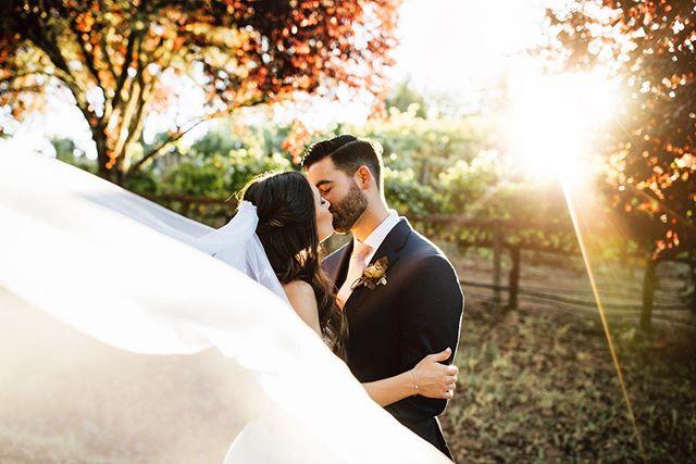 ✨Dreamy wedding vibes!✨