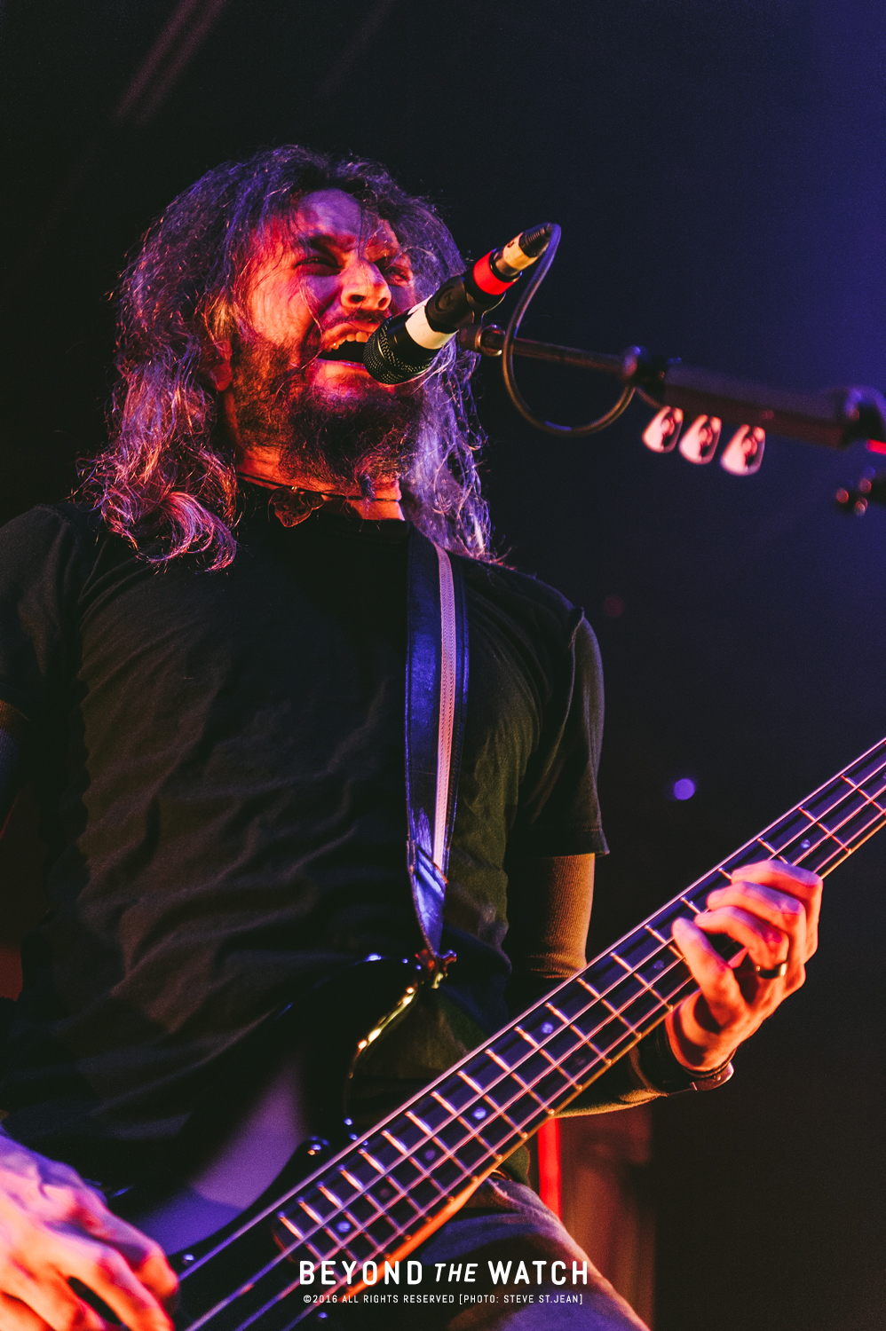 BTWArchives-2011_Mastodon-4.jpg