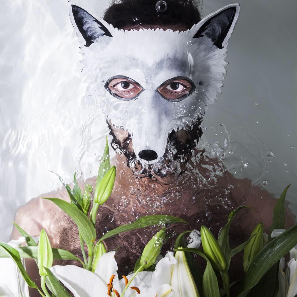 Wolf Colony //Photo: Daniel Greer