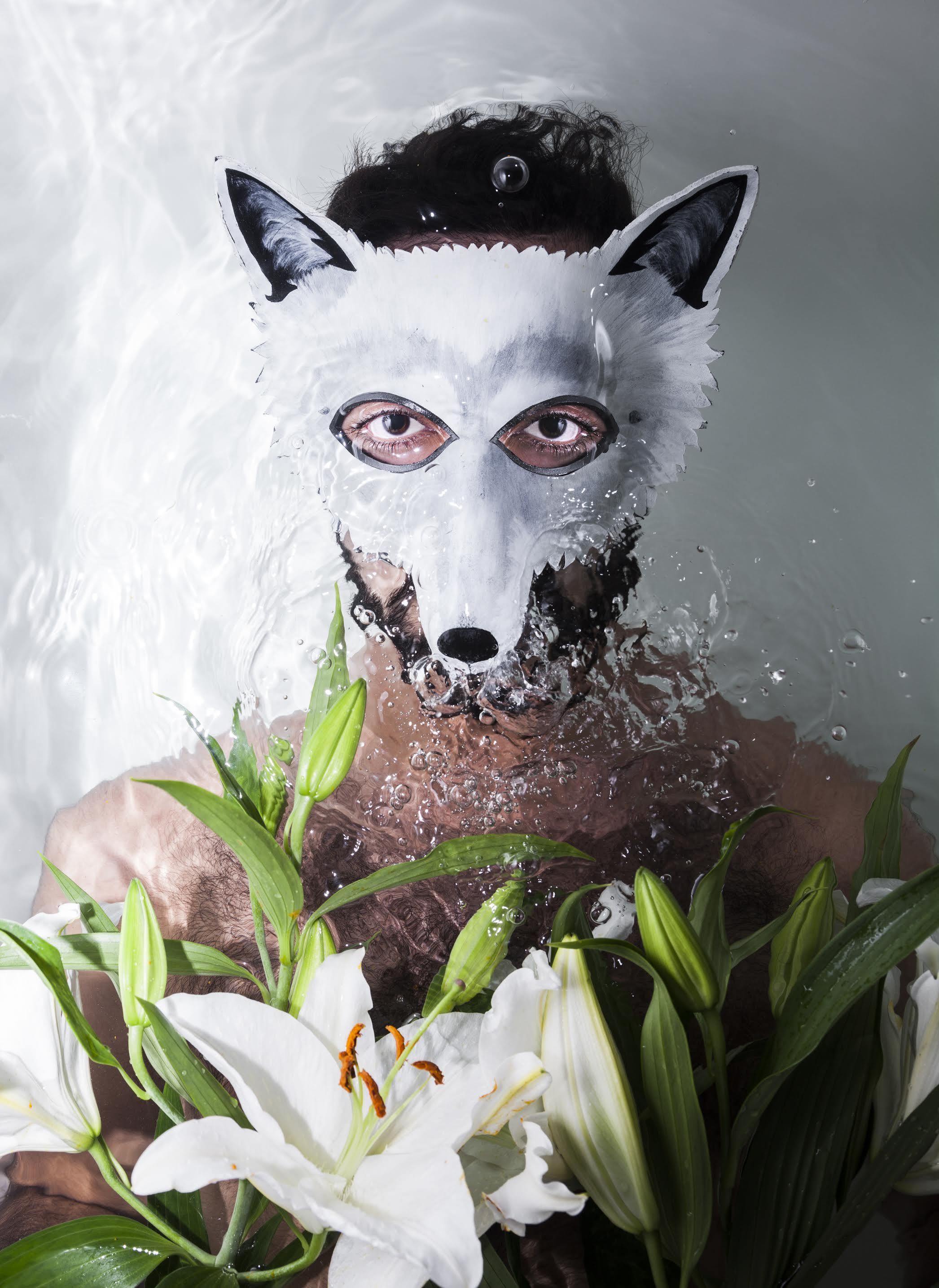 1446792519_Wolf-Colony-Flowers.jpg