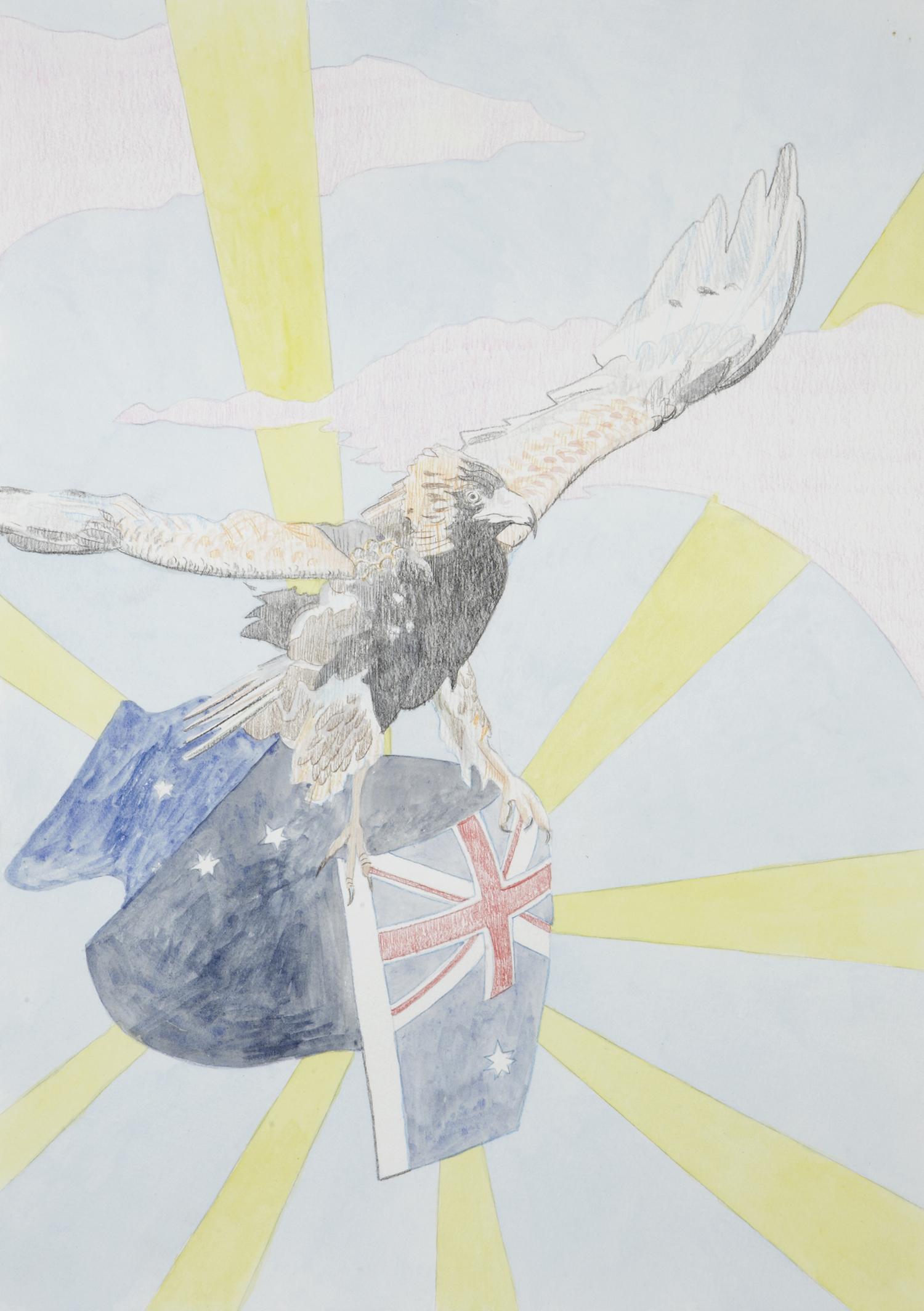 Australian Eagle #3, 2012, Watercolour and pencil on paper, 29.7 x 42.0 cm, Photo: Sam Scoufos