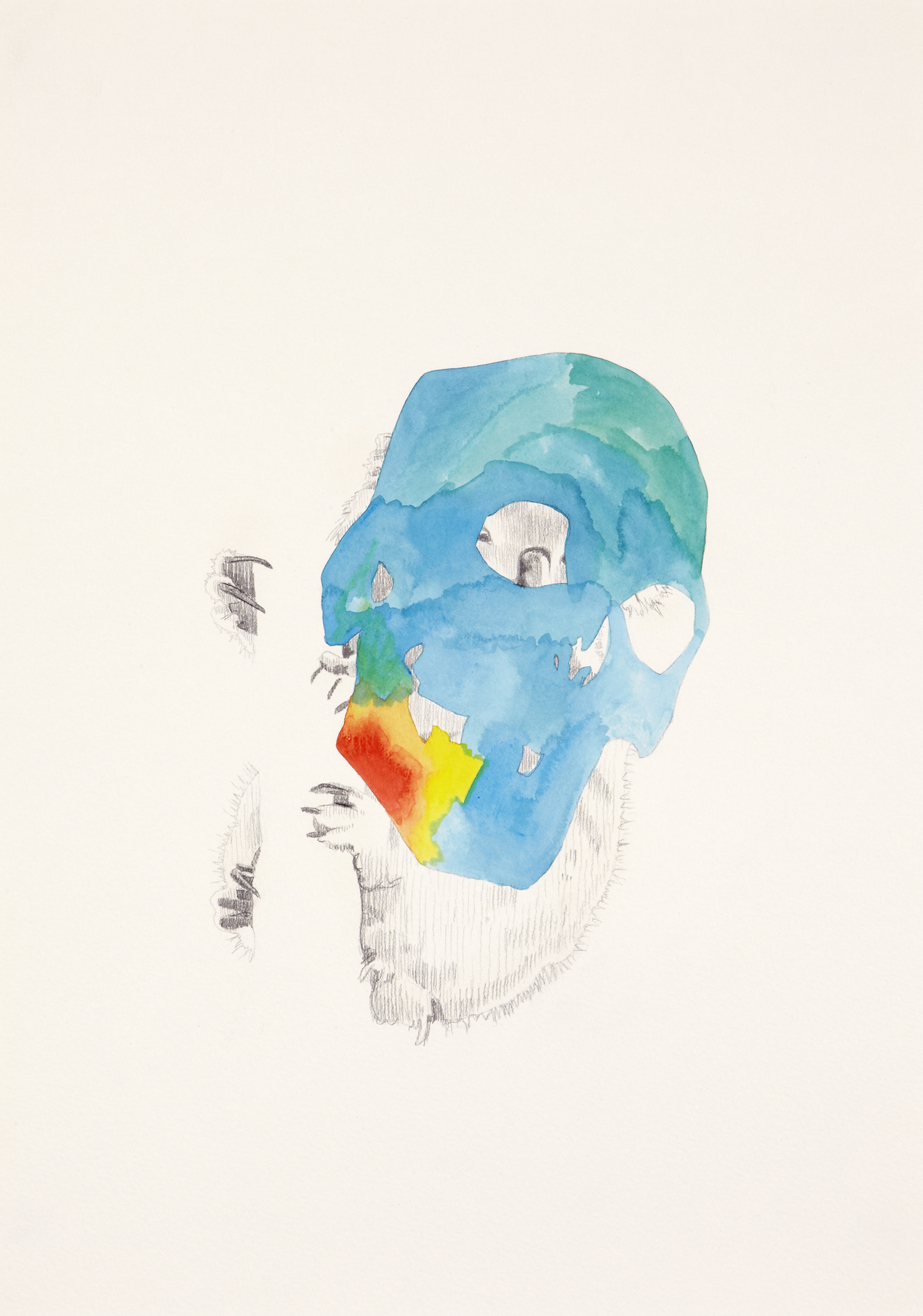 Skull Centric Behaviour #4, 2011, Watercolour and pencil on paper, 42.0 x 29.7 cm, Photo: Sam Scoufos
