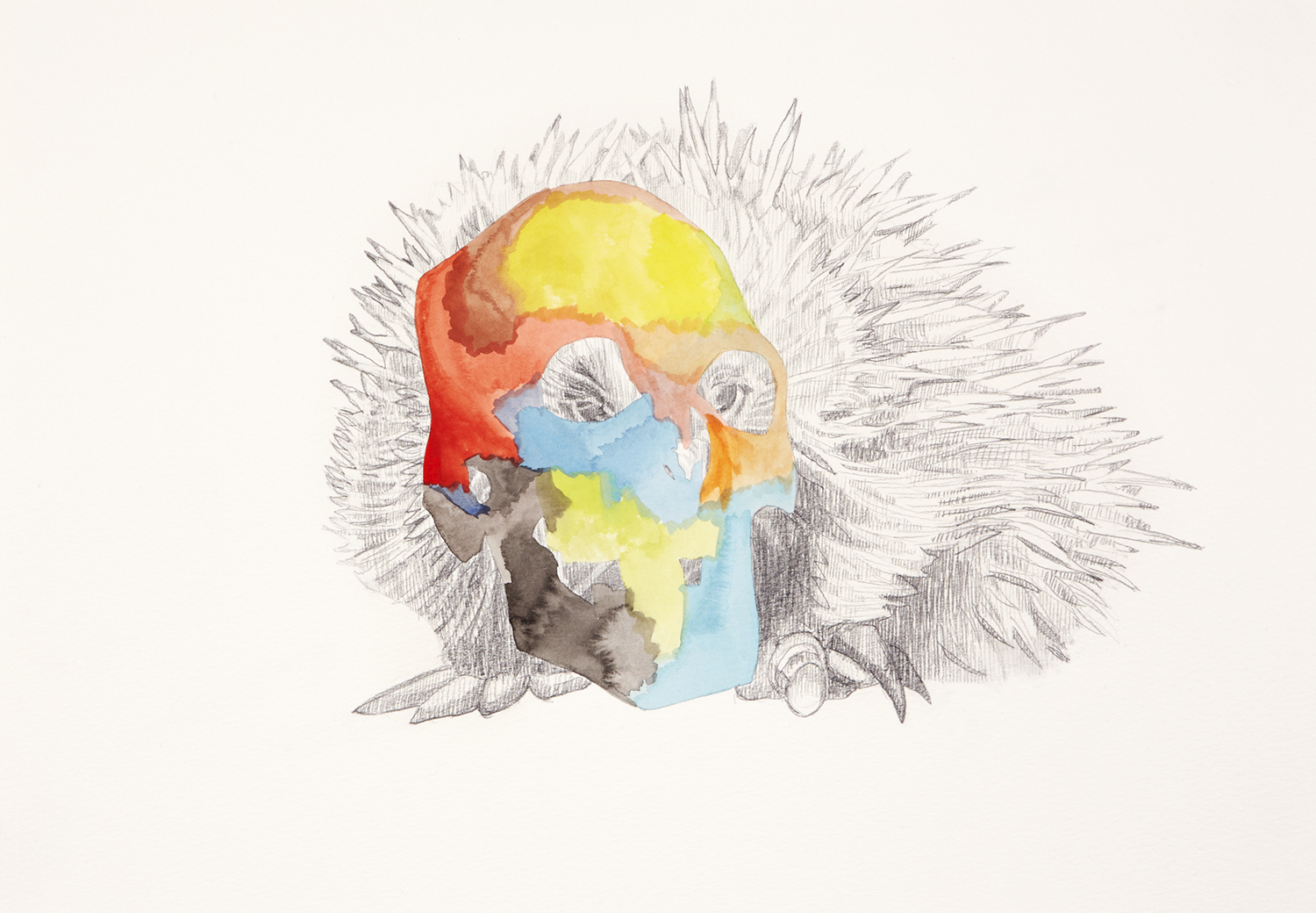 Skull Centric Behaviour #7, 2011, Watercolour and pencil on paper, 42.0 x 29.7 cm, Photo: Sam Scoufos