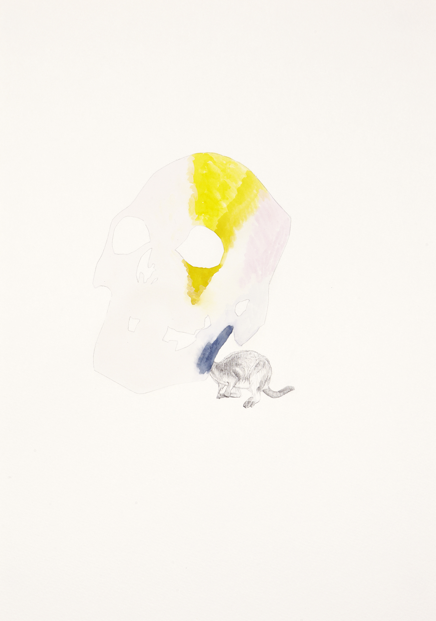 Skull Centric Behaviour #16, 2011, Watercolour and pencil on paper, 42.0 x 29.7 cm, Photo: Sam Scoufos