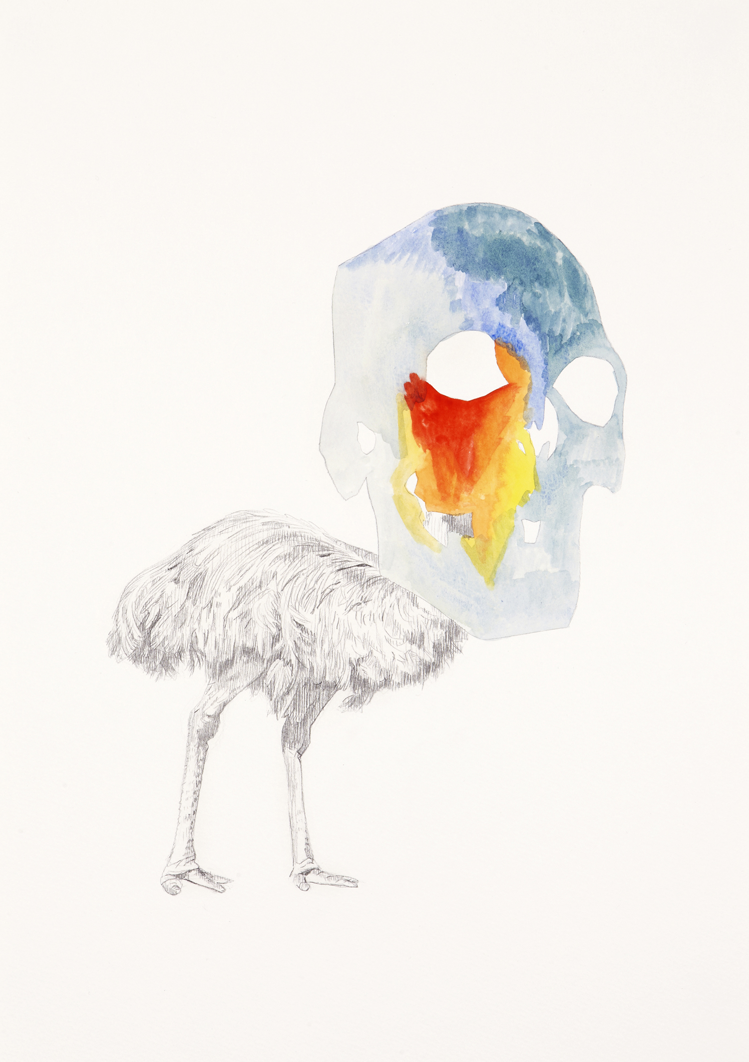 Skull Centric Behaviour #20, 2011, Watercolour and pencil on paper, 42.0 x 29.7 cm, Photo: Sam Scoufos