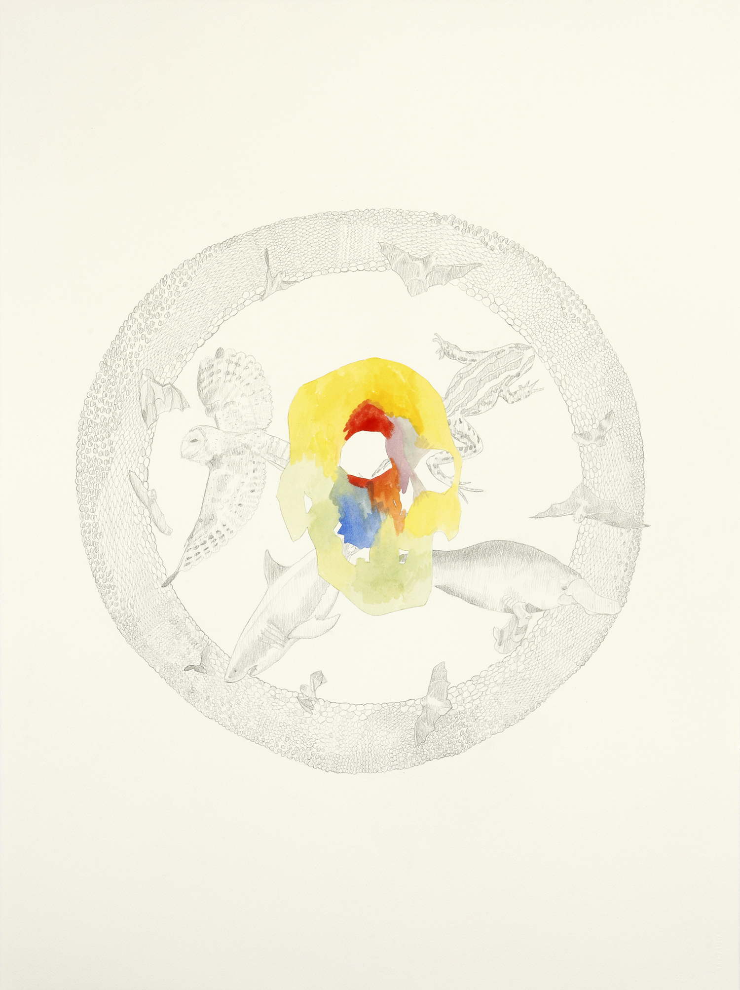 Circle Of Life, 2011, Watercolour and pencil on paper, 56.0 x 76.0 cm, Photo: Sam Scoufos