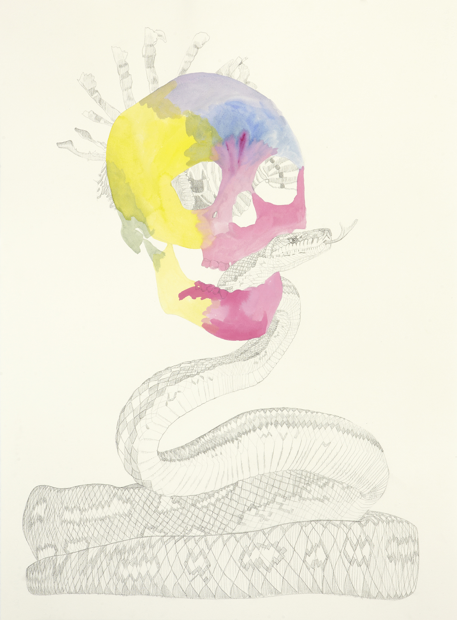 Here There Be Monsters, 2011, Watercolour and pencil on paper, 56.0 x 76.0 cm, Photo: Sam Scoufos