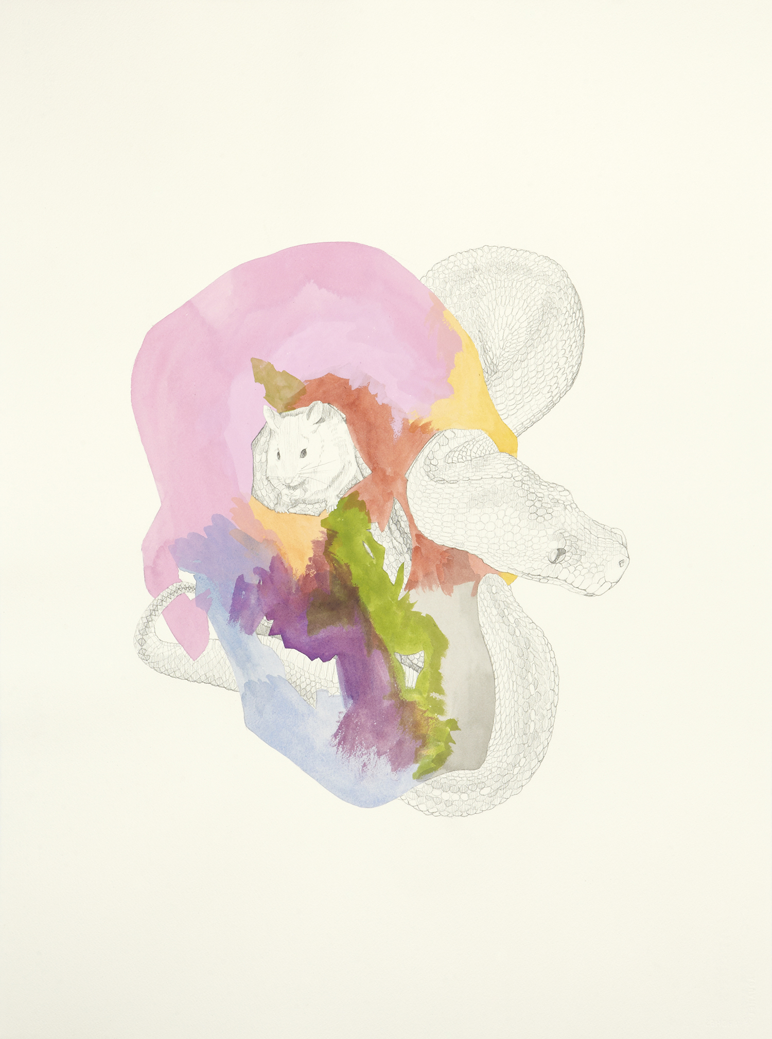 Knowledge Persists After Death, 2011, Watercolour and pencil on paper, 56.0 x 76.0 cm, Photo: Sam Scoufos