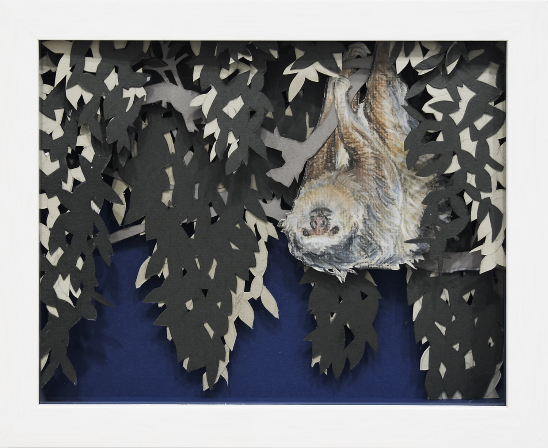 Sloth, 2008, Pastel on card, 25.6 x 20.7 x 3.8 cm