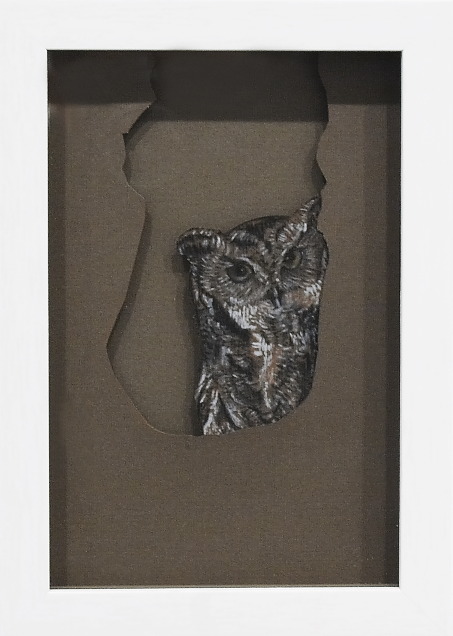 Owl, 2008, Pastel on Card, 17.1 x 24.2 x 3.8 cm