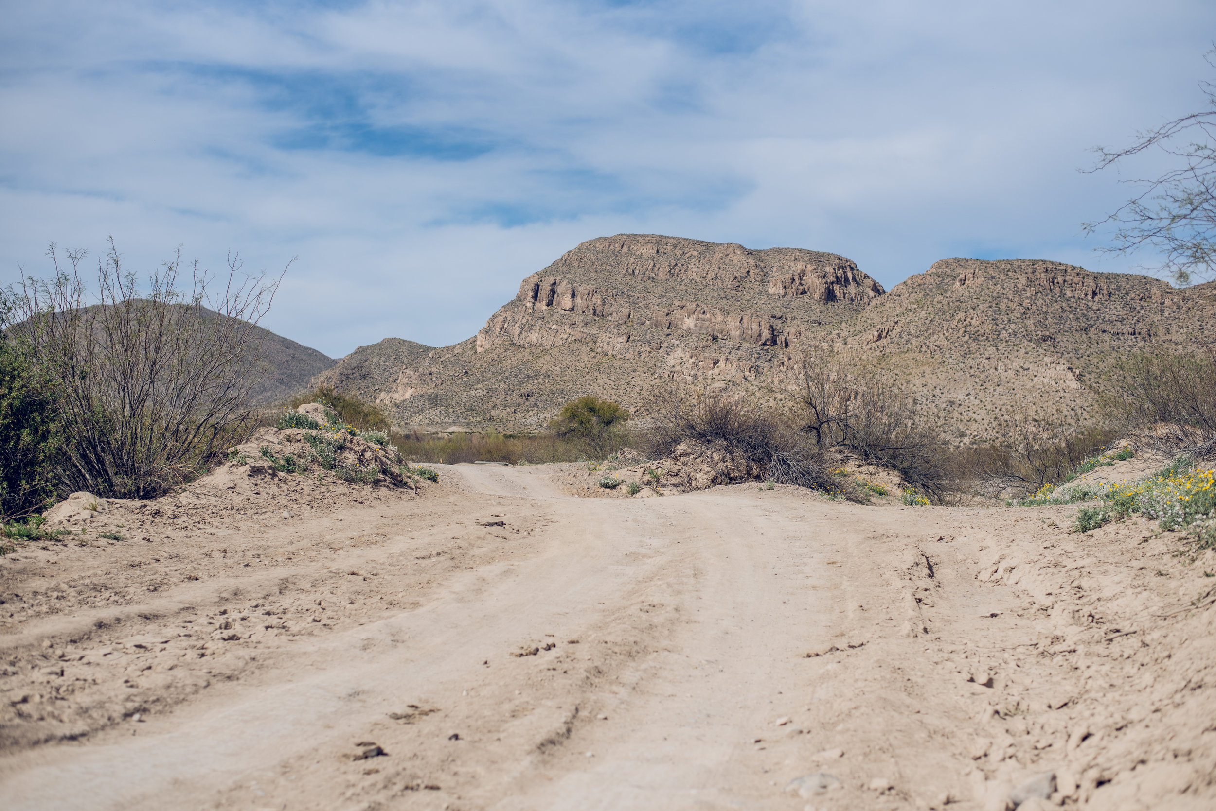 on the tourist route to boquillas del carmen, mexico