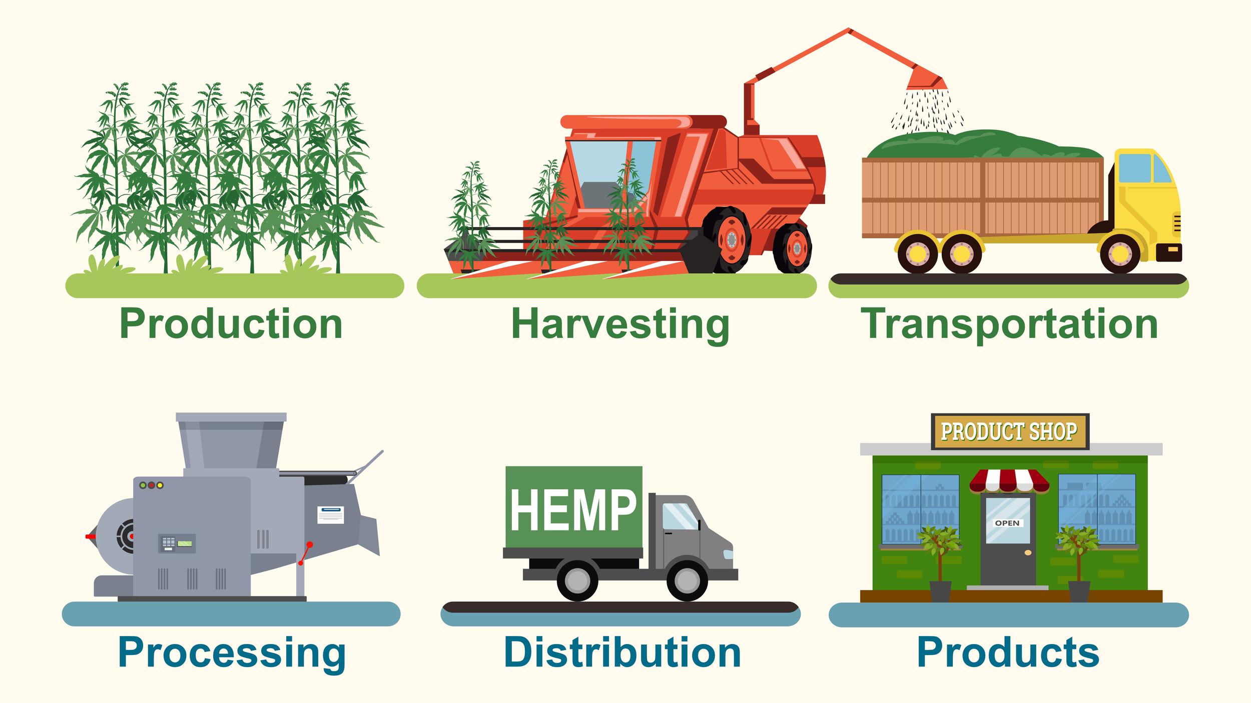 Hemp Supply Chain.png