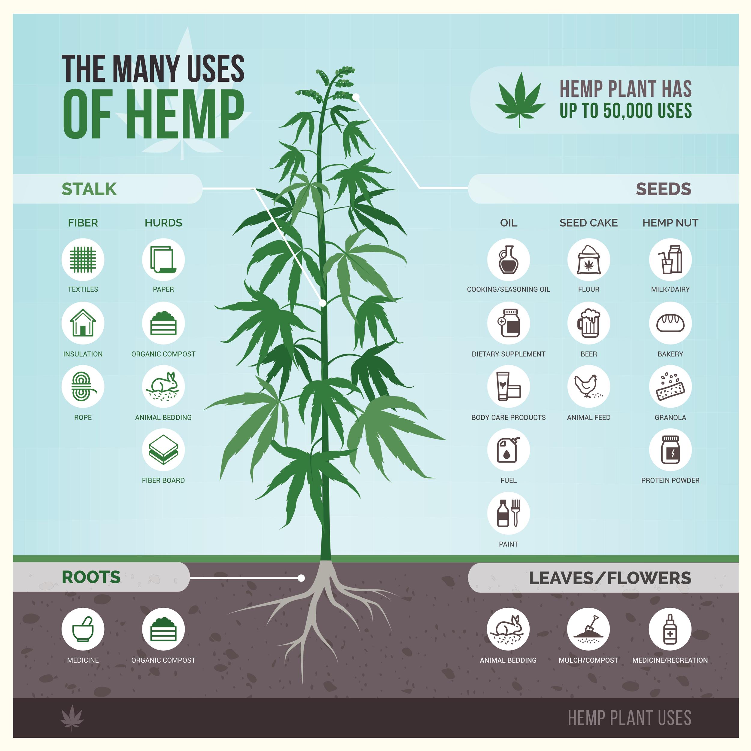 Hemp Use Chart.png