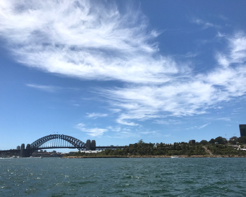 Sydney Harbour featuring Barangaroo Reserve and Sydney Harbour Bridge