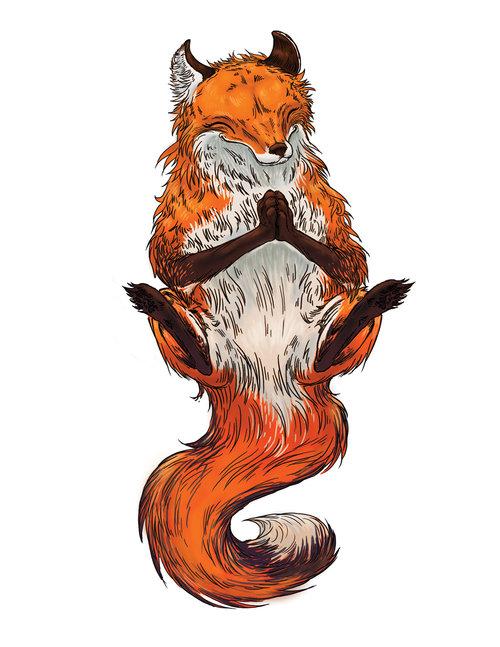 Meditating fox