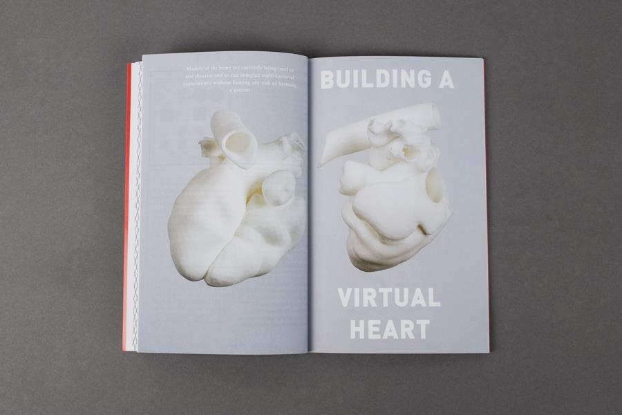 Building a Virtual Heart