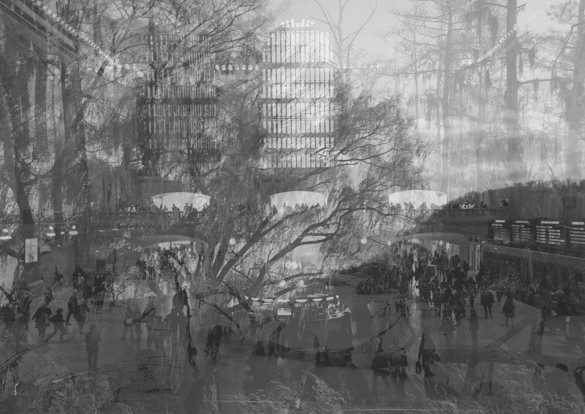 Film Concept Collage
