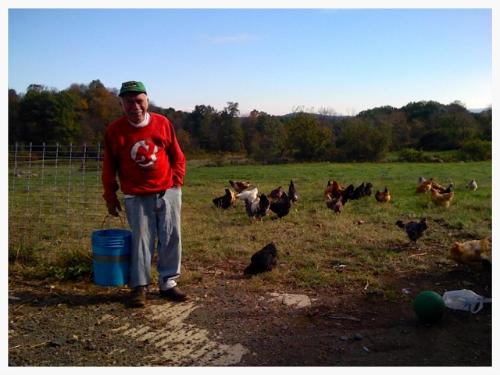 grandpa feeding chickens out back.jpg