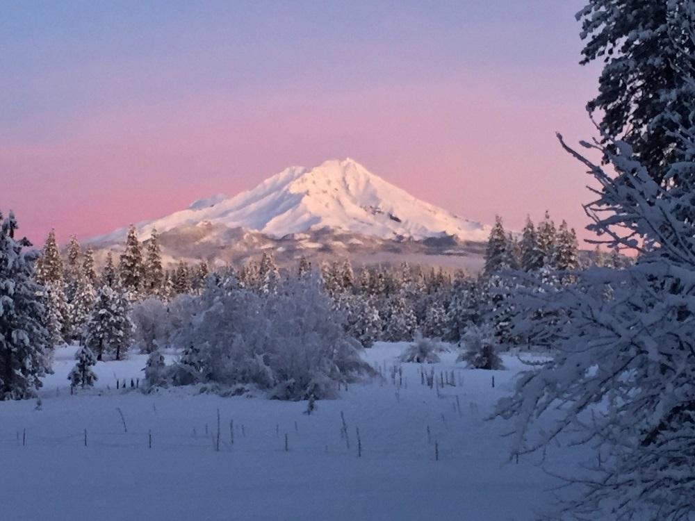 Mt. Shasta Morning Glow