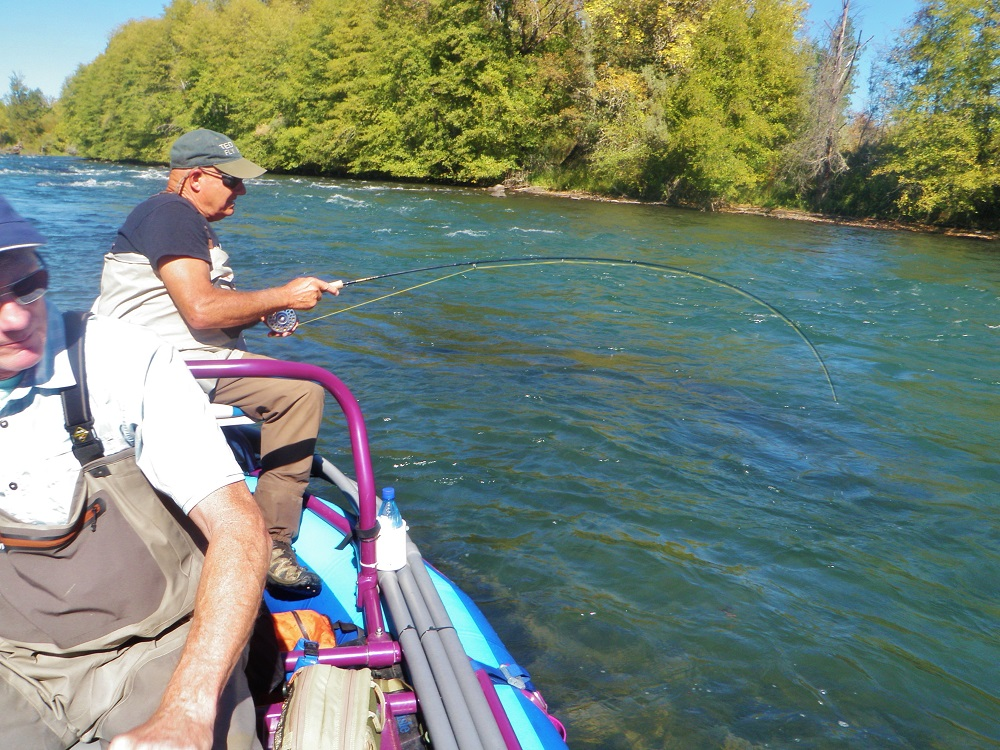 Rogue Bobbercator Fishing